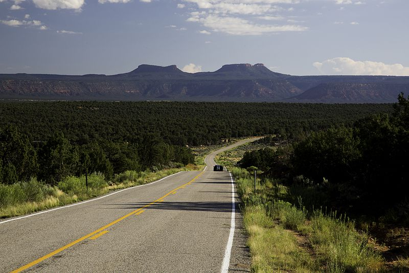 Road_in_Bears_Ears (1)